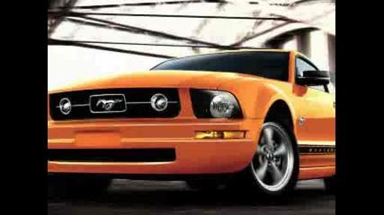Mustang cars ;)