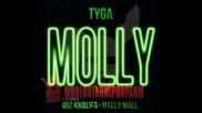 Tyga ft. Wiz Khalifa, Mally Mall - Molly # Audio #