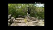 Оцеляване на предела - Северна Австралия Част 2
