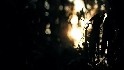 *превод* Sarah Brightman - Nella Fantasia