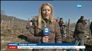 В Сухиндол отбелязват празника на виното вече 150 години