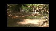 Лов на раци и риболов на каракуда