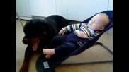 Ротвайлер И Бебенце
