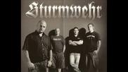 Sturmwehr - Tausend gute Grunde (2010)