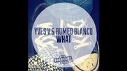 *2013* Yves V & Romeo Blanco - What ( Original mix )