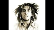 Bob Marley, Toxic Twins - Roots Rock Reggae