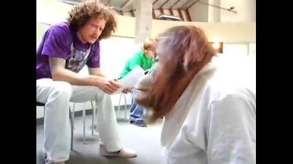 Фънки маймуна на кастинг в Холивуд
