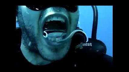 как да си почистим зъбите под вода
