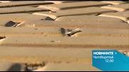 Новините на Нова – обедна емисия на 5 ноември