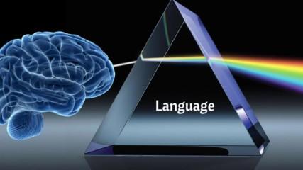Language Is The Battlefield