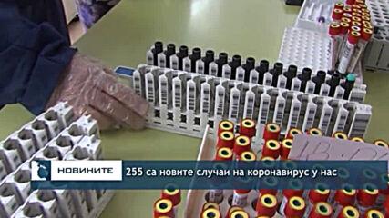 255 са новите случаи на коронавирус у нас