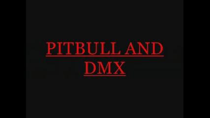 Pitbull and Dmx