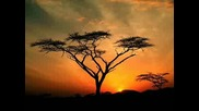 Miriam Makeba - African Sunset