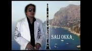 Sali Okka Live
