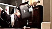 Котка събаря телевизора на човек