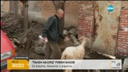 """""""Пълен абсурд"""": За козите, бълхите и хората"""