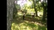 Работници събирали трева в българското знаме