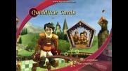 играта хари потър световна куидична купа - практика - удари, голове и търсач
