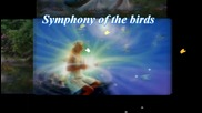 **• Симфония на птиците! ... ( Frederic Delarue music) ... ...•**