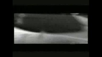 Nick Drake & Heath Ledger - Black Eyed Dog