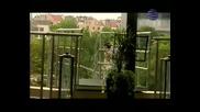 Преслава - Ти (full Hd Video)