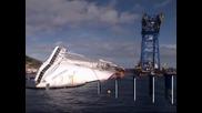 """Учени спасиха рядък вид гигантски миди край останките на кораба """"Коста Конкордия"""""""