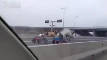 Луда гонка с коне на автомагистрала-румъния