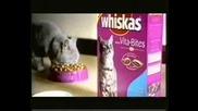 Смешна Реклама На Whiskas