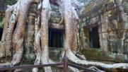 Храмът на Лара Крофт (