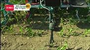 Капково напояване на царевица и зърнени култури. Решения за високи добиви от Аквамат 2000.