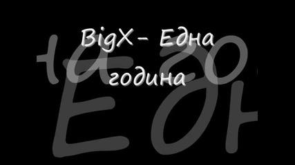 Big X- Eдна година