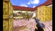Counter Strike 2009 ( Heyman Niceshot )