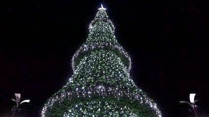 Бургас по Коледа