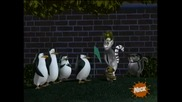 The Penguins of Madagascar - Penguiner takes all