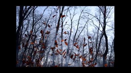 George Acosta feat. Fisher - True Love ( Original Mix )