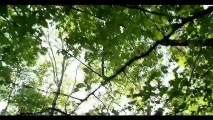 Bili Hlapeto ft. Divna - Slynchevi dni (official video)
