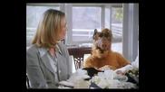 Проект Алф Филмът Диема Project Alf 1996