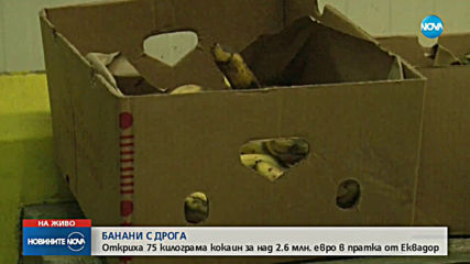 Откриха голямо количество кокаин в склад за плодове в Бургас