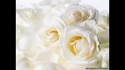 Букет из белых роз - превод