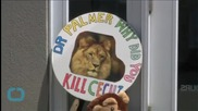 Ted Nugent: 'Cecil the Lion Story is a Lie'