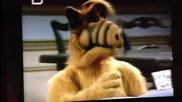 Djordjano - Na kopon ( Original Alf )