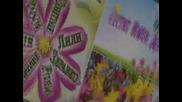 Честит празник - Цветница