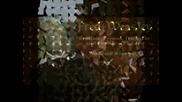 Жертвите в Хари Потър 7