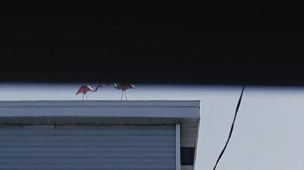 Juste la fin du mondesoundtrackcamille - Home Is Where It Hurts