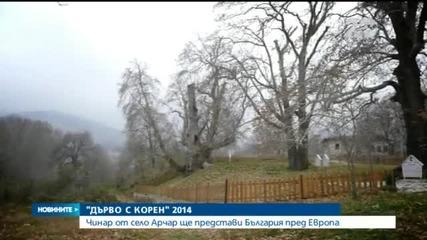 Новините на Нова (27.11.2014 - централна)