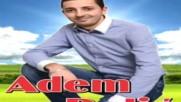 2016 / Adem Delic - Sarajevo grade moj