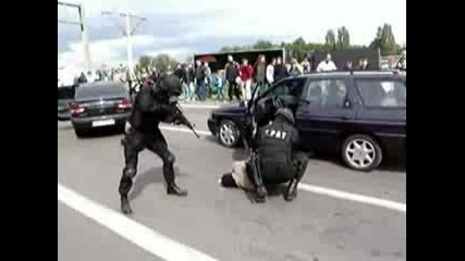 Полските Swat (spat)