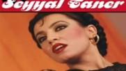 Seyyal Taner Siirimin Dili Mistir Dj Turkish Pop Mix Bass 2016 Hd