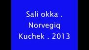 Sali okka -- Norvegiq Kuchek 2o13