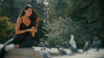 Mladen Grdovic - 2019 - Sve je to za ljude (hq) (bg sub)